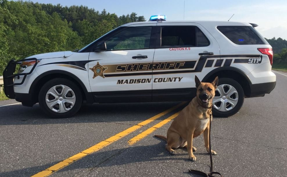 Madison Co. Sheriff's Office introduces new K-9 - WSMV News 4