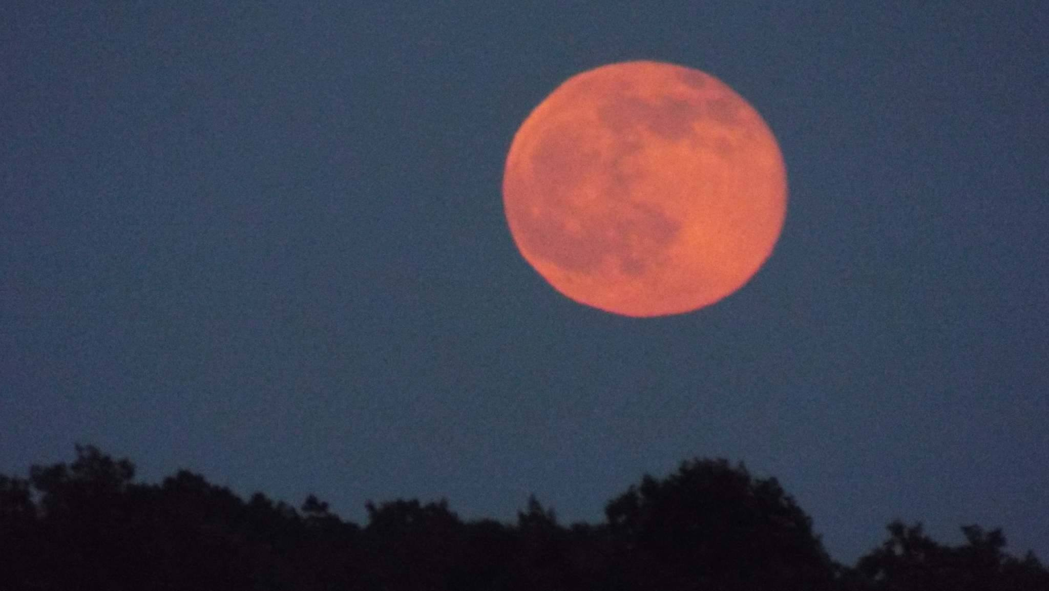 (File image of Strawberry Moon / June 20, 2016)