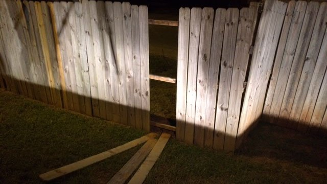 Clowns reportedly broke down the fence to get away at Shemwood Apartments. (August 30, 2016 FOX Carolina)
