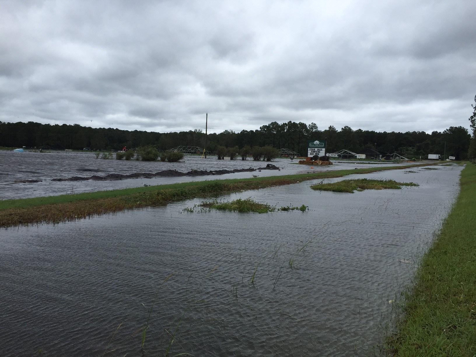 Flooding near Highway 17 in Mt. Pleasant (FOX Carolina)