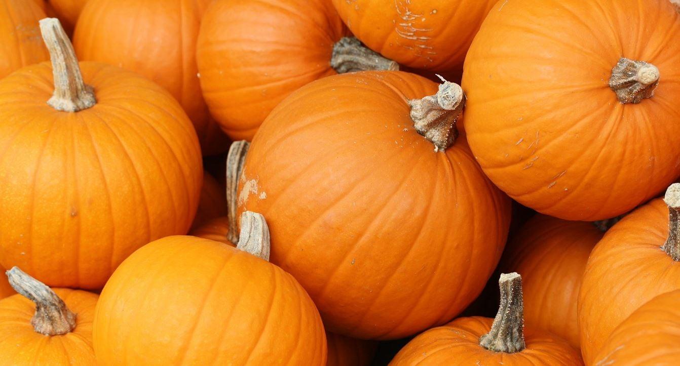 Pumpkins (Wikimedia Commons)