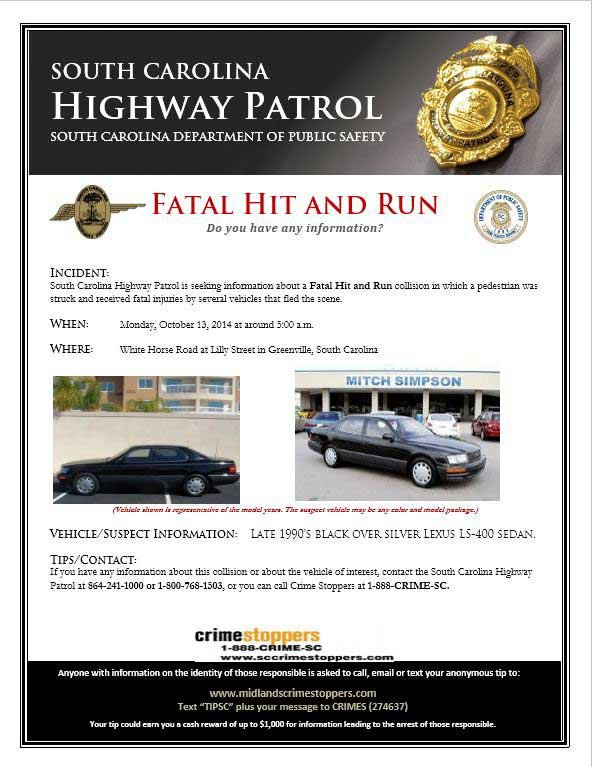 The hit-and-run remains unsolved. (Source: SCHP)
