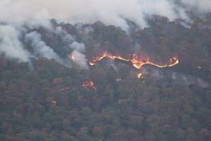 Flames on Pinnacle Mountain (Courtesy: Robbie Wright)
