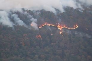 Flames on Pinnacle Mountain (Courtesy: Robbie Wright)