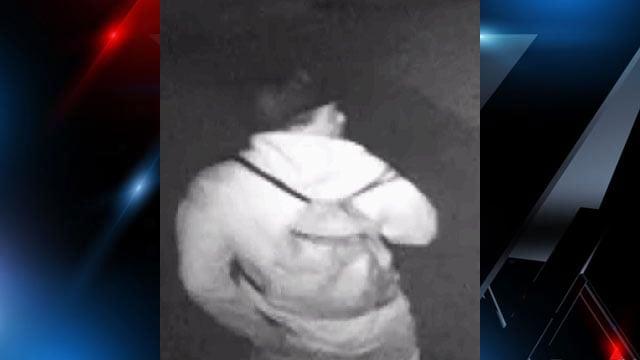 Suspect (Source: Henderson Co. Sheriff's Office)