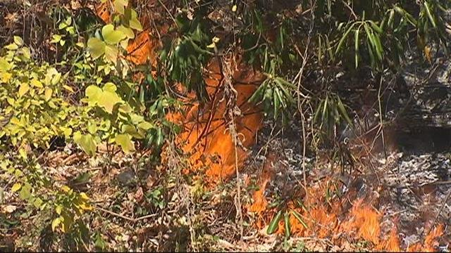 Flames near Lake Lure (FOX Carolina/ Nov. 16, 2016)