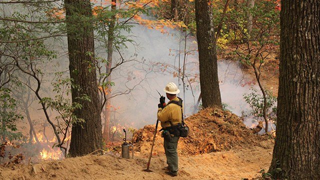A firefighter uses a drip torch to set backfires along the firebreak on the east side of the fire. (Source: SC Forestry Commission)