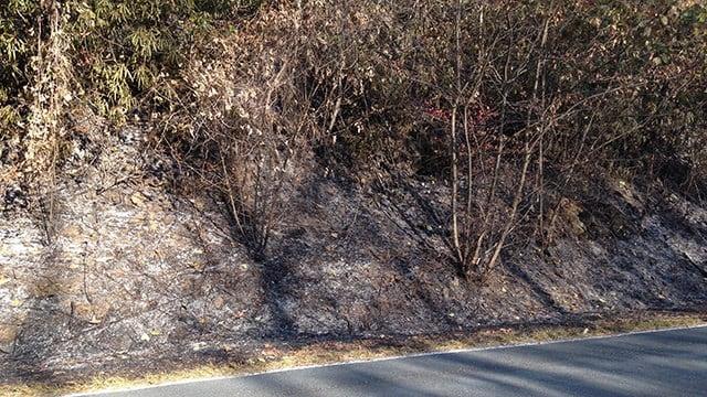 Scene of wildfire on Curtis Creek Road. (November 20, 2016 FOX Carolina)