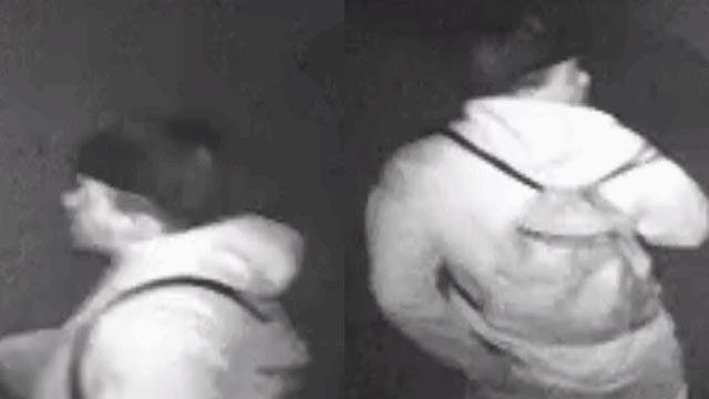 Surveillance photos of the suspecy (Courtesy: APD)