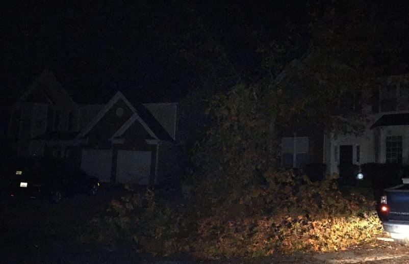 Downed tree in a Simpsonville neighborhood (FOX Carolina/ Dec. 1, 2016)