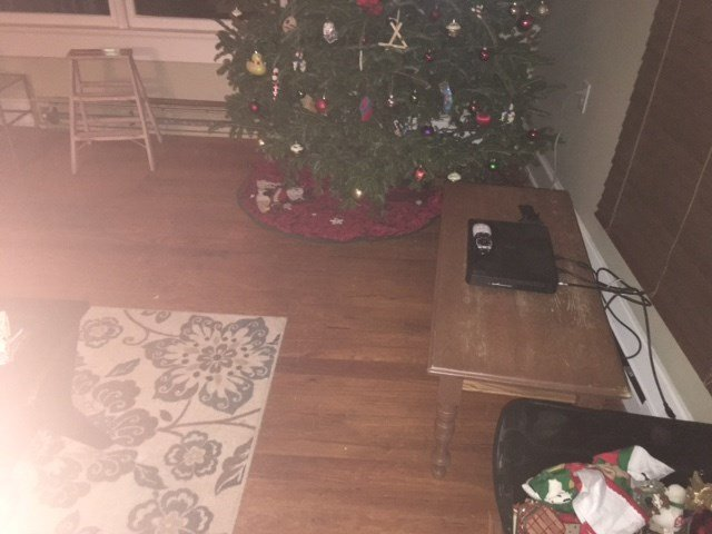Howard says someone broke into her home and stole all her family's Christmas presents, as well as her late mother's ashes (Courtesy: Tracy Howard)