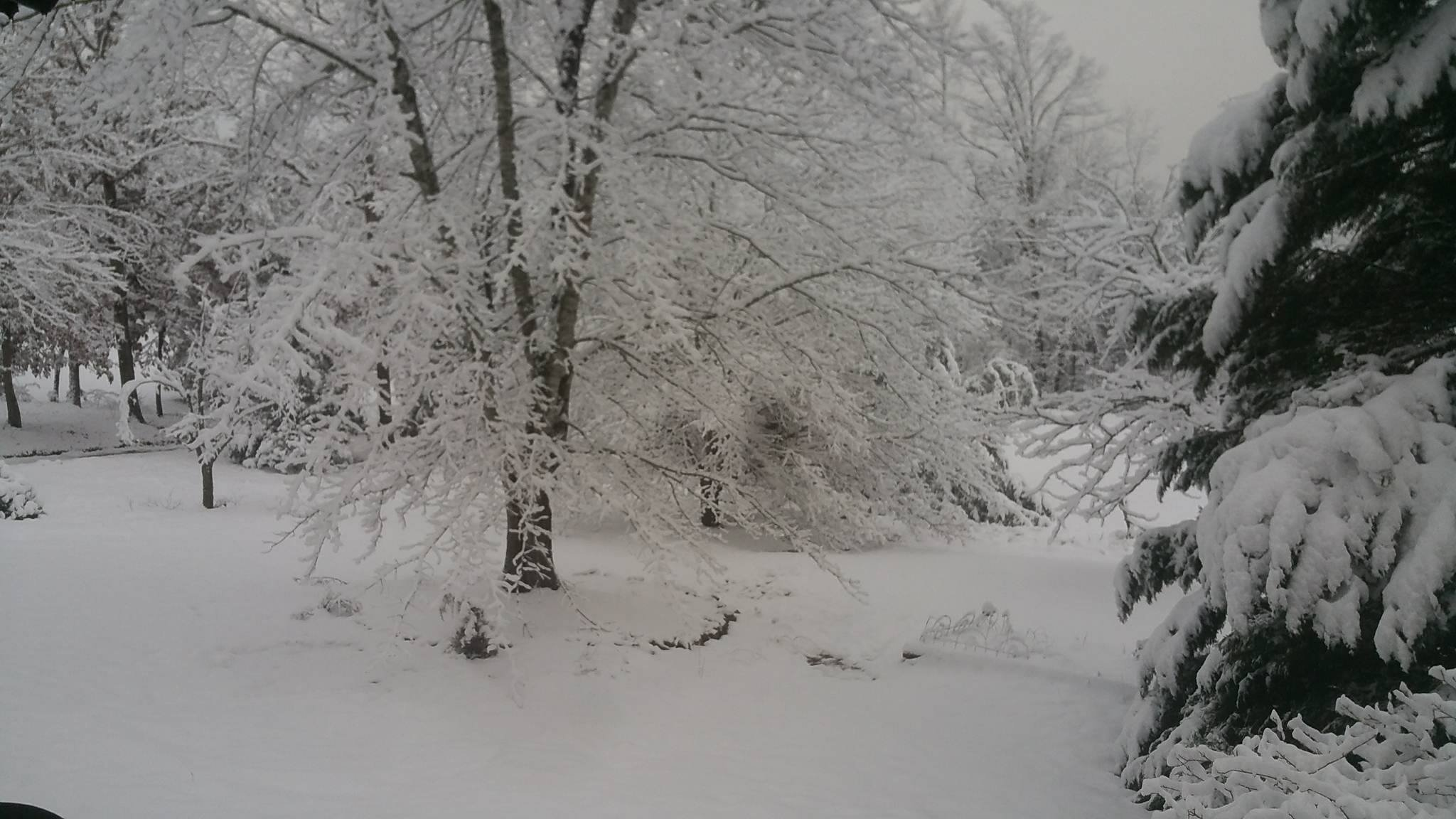 Viewer submitted photo of the snow on Jan. 7, 2017