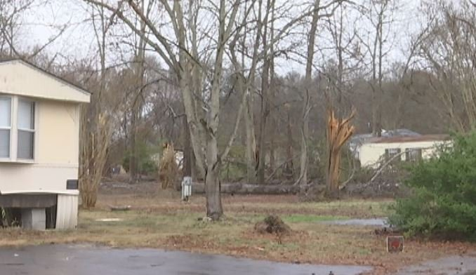 Fallen trees and debris remain at Country Air Mobile Home Park in Simpsonville, two months after a tornado swept through the area (FOX Carolina)