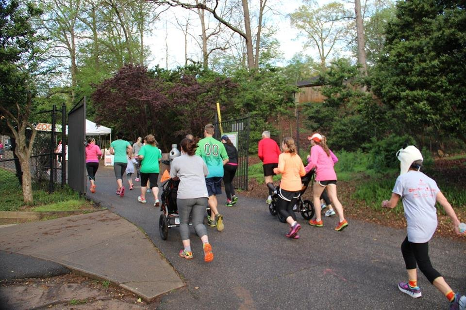 2016 Zoom Through The Zoo 5K race (Courtesy: Greenville Zoo Foundation)