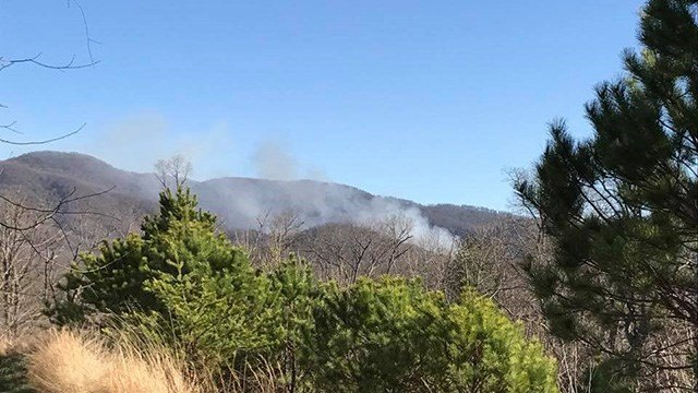 Structure fire spreads to woods becoming brush fire endangering at least 3 Buncombe Co. structures. (Source: iWitness)