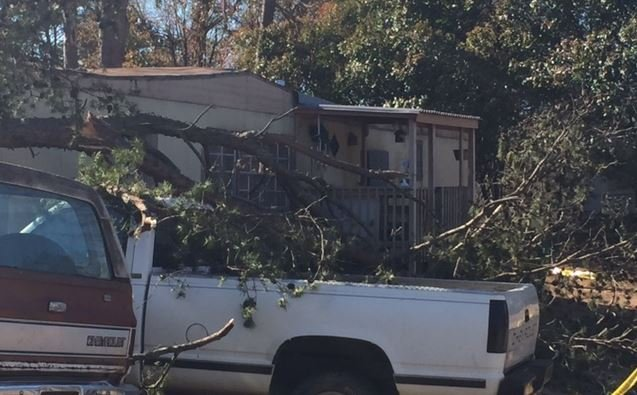 8 people were displaced when the tree fell onto the home (FOX Carolina/ March 15, 2017)