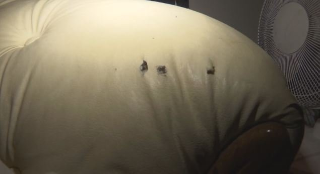 Bullets pierced this couch on which a 16-year-old boy was sleeping during a drive-by shooting Monday morning (FOX Carolina)
