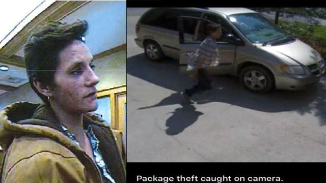 Jackie Diana King, believed to be driving a Dodge Caravan (Courtesy: APD)