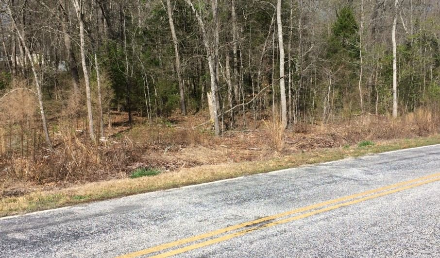 The coroner said the man's body was found in the woodline near the road (FOX Carolina/ March 31, 2017)