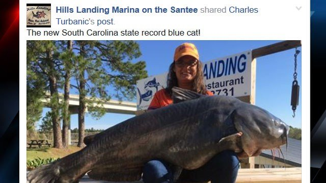 Charles Turbanic shared this photo of Paula Haney and her record-setting blue catfish (Courtesy:Charles Turbanic/ Facebook)