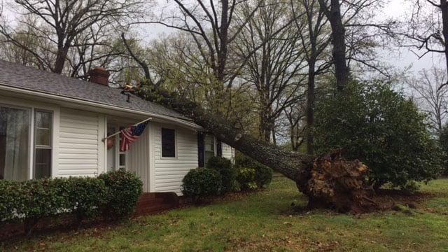 Tree on house on Pelham Road (Apr. 3, 2017/FOX Carolina)