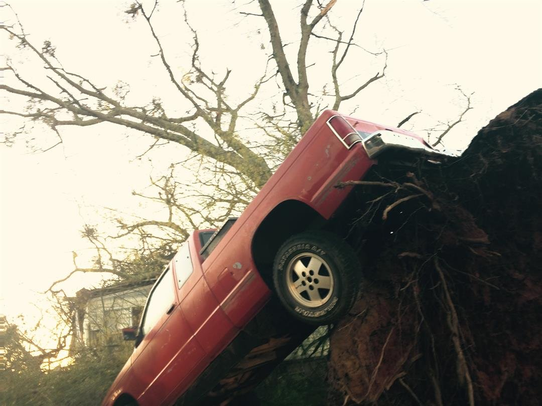 An overturned tree lifted a truck off the ground on Owens Drive