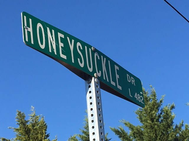Honeysuckle Drive (Apr. 4, 2017/FOX Carolina)