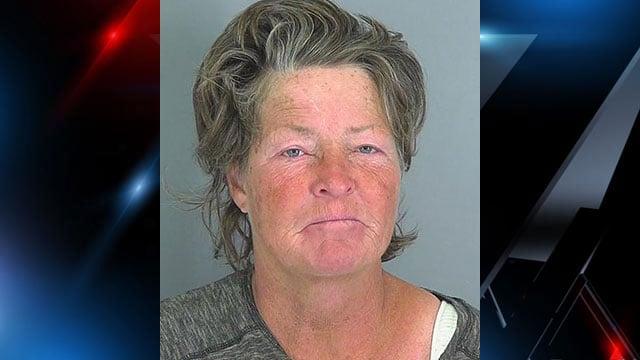 Tammy Green (Source: Spartanburg Co. Detention)