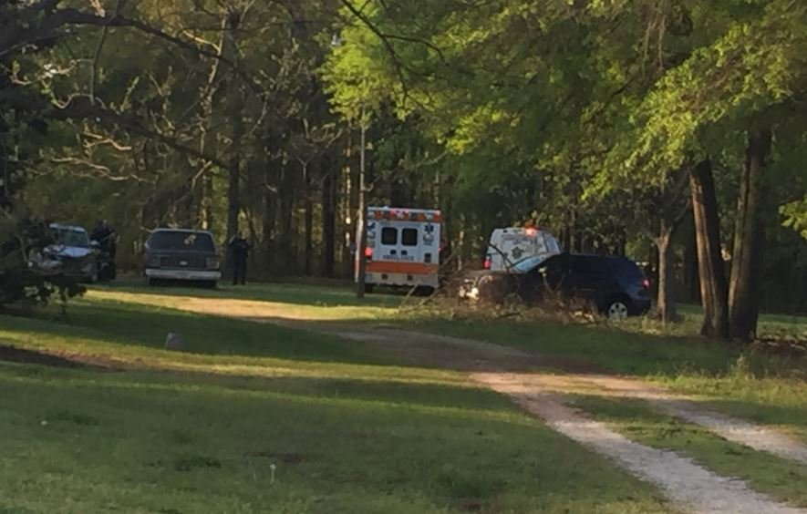 Photo of wooded area where Clark was found (FOX Carolina/ April 13, 2017)