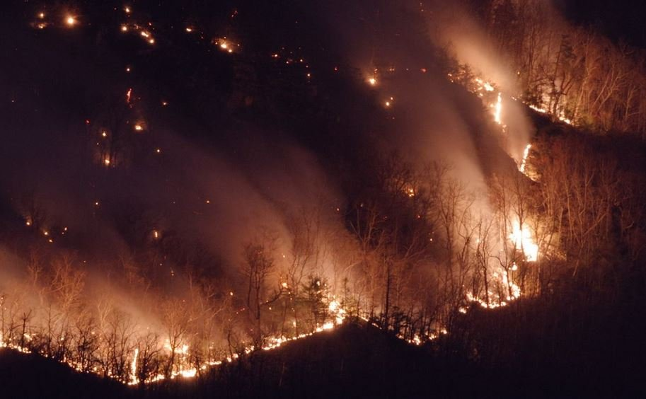 New photos of the wildfire posted the the US Forest Service (Courtesy: USFS/ WBTV)