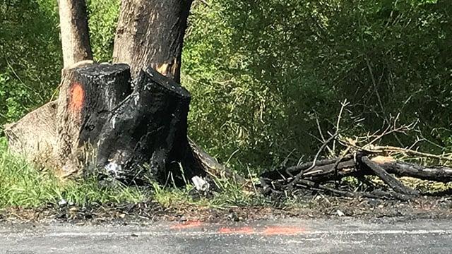 Scene of fatal Spartanburg crash. (FOX Carolina/ 4/16/17)