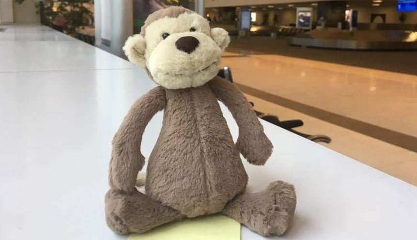 Stuffed monkey lost at Greenville-Spartanburg International Airport (Source: GSP)