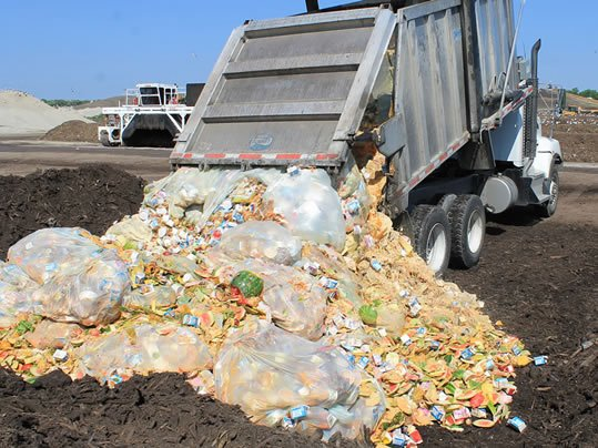 DHEC says South Carolinians throw away 640,000 tons of food each year (Source: DHEC)