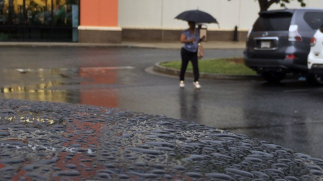 Woman walks through rain (file/FOX Carolina)