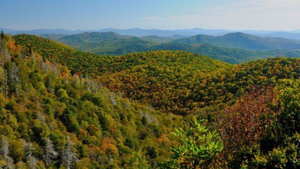 East Fork Overlook (Source: National Parks Service)