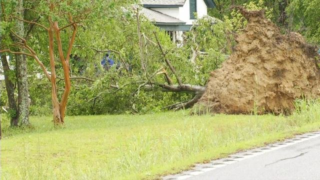 Downed tree in Newberry County (May 24, 2017/FOX Carolina)