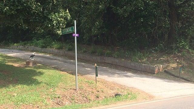 Cottontail Drive. (5/27/17 FOX Carolina)