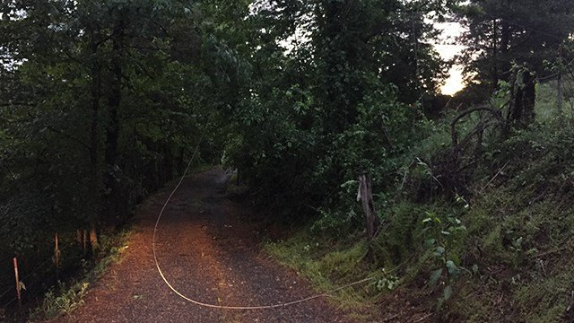Downed power line on Sam Greene Road. (5/28/17 FOX Carolina)