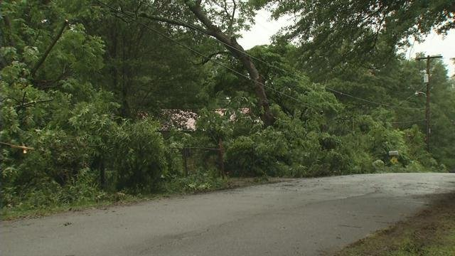 Trees down on Prospect Street (FOX Carolina/ June 5, 2017)