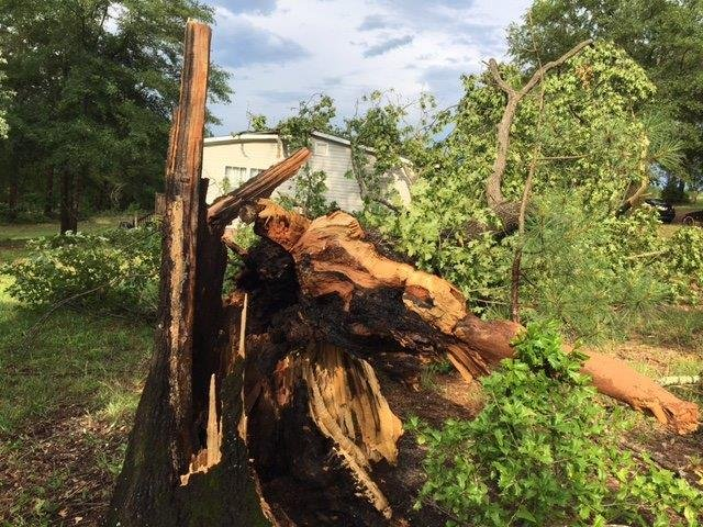 Storm damage in Piedmont. (6/13/17 FOX Carolina)