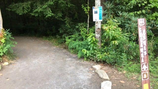 Catawba Falls (FOX Carolina/ 6/24/17)