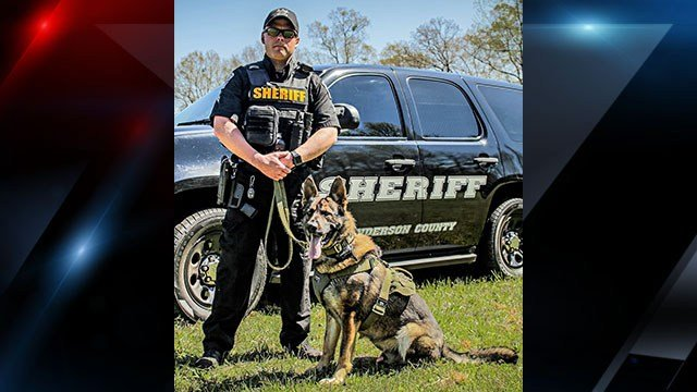 Anderson County Sheriff pose with K9 Sandro (Source: Anderson Co. Sheriff's Office)