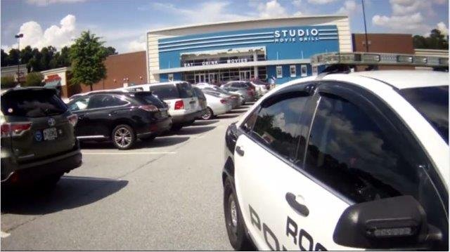Police said the owner of the dogs was inside the movie theater while her pets were locked inside her car. (Source: Roswell PD)