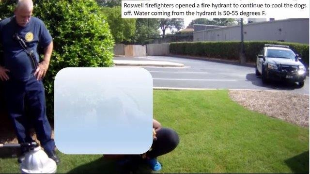 Dog owner cools off dogs with water from fire hydrant. (Source: Roswell PD)