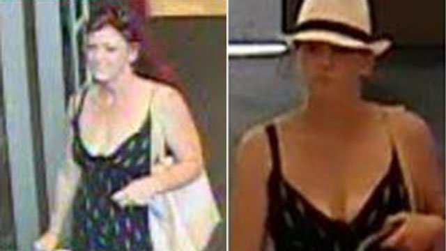 Shoplifting suspect in Greer (Source: Greer PD)