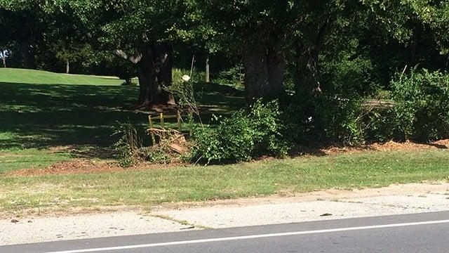 Scene of fatal collision on on Jonesville Highway. (7/9/17 FOX Carolina)