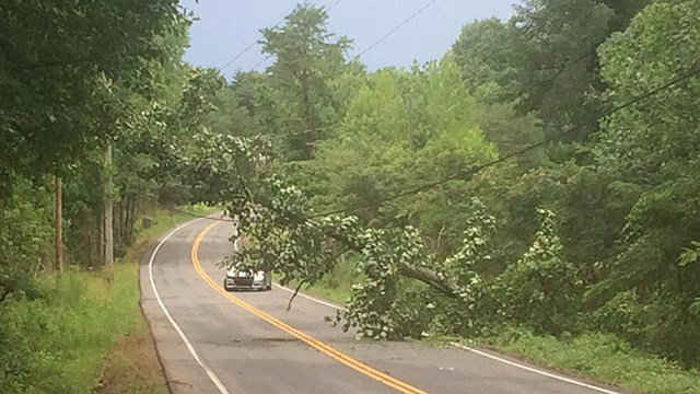 Tree down on State Park Road. (7/15/17 FOX Carolina)
