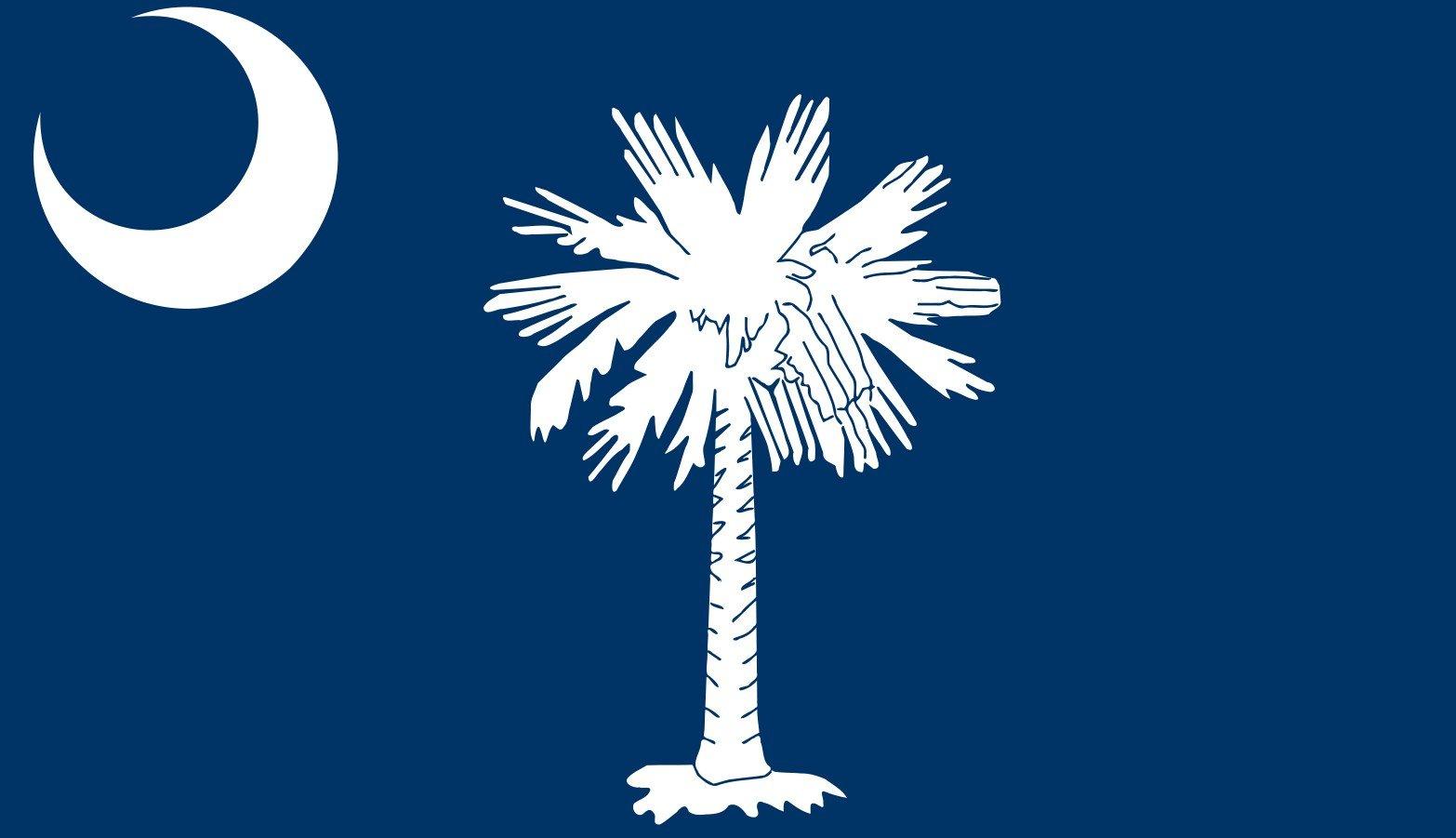 South Carolina State flag. (Source: AP Images)