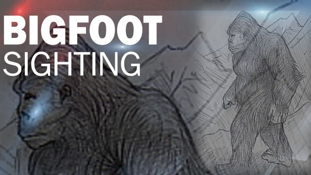 South Carolina Police: Please don't shoot 'Bigfoot'