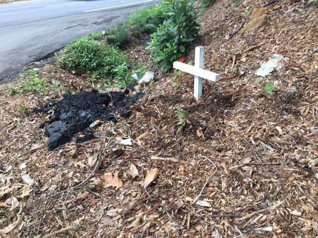 Memorial set up for James Searcy (Aug. 10, 2017/FOX Carolina)